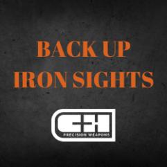 BACK UP IRON SIGHTS